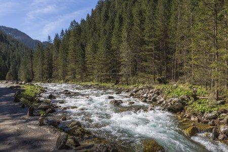 Koscieliska Valley - Tatras Mountains, Polish National Park.