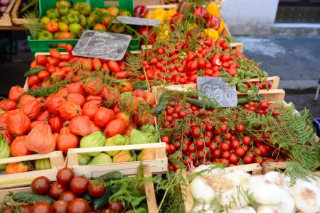 Fruits and vegetables in the  market