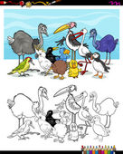 cartoon birds for coloring
