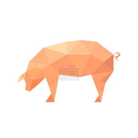 polygonal pig animal