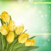 Kytice tulipánů. EPS 10