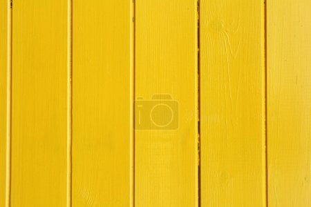 Wooden plank painted background