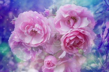 Photo pour Fond rêve artistique de belles roses avec des lumières de bokeh - image libre de droit