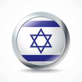 Israel flag button - vector illustration