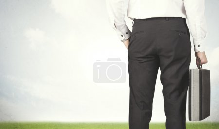 Businessman with meadow