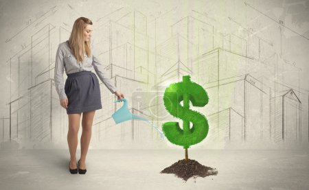 Business woman poring water on dollar tree sign on city backgrou