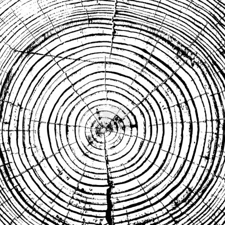 Tree rings saw cut tree trunk background.