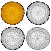 Set tree rings saw cut tree trunk background. Vector illustratio