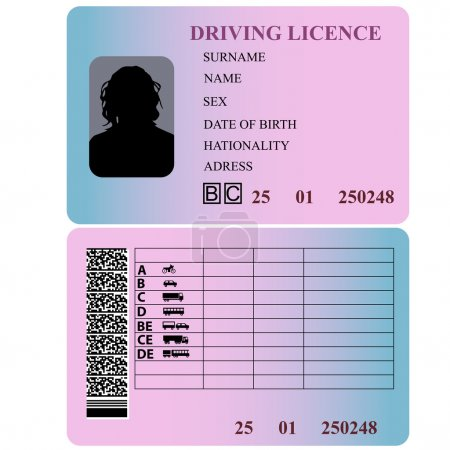 Driving license woman. Vector illustration...