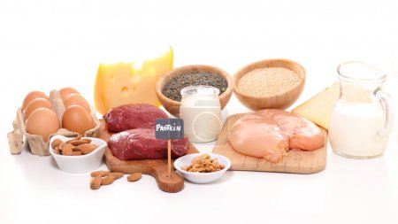 protein sources products