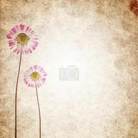 Old vintage paper texture background with dry flowers