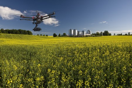 Photo for Canola field with farm structures on a background highlighted by a sunset - Royalty Free Image
