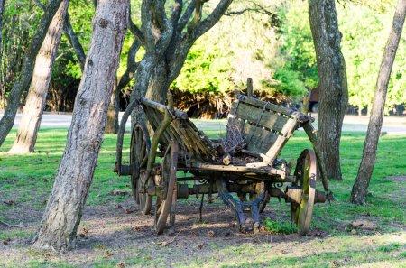 retro horse carriage