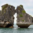 Постер, плакат: Two Cocks Fighting Rocks in Halong Bay