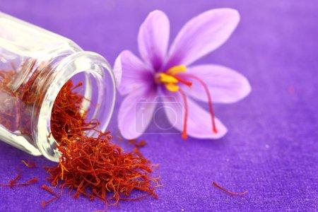 Photo pour Gros plan sur les fleurs de safran et les épices de safran séchées - image libre de droit