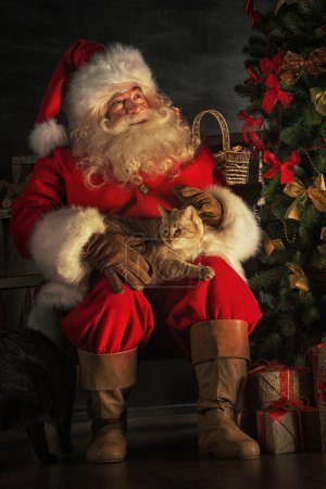 Photo for Santa Claus sitting near Christmas tree and embracing his cat. Santa at home - Royalty Free Image