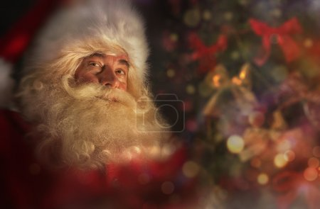 Photo for Santa Claus near Christmas tree. Festive holiday background - Royalty Free Image
