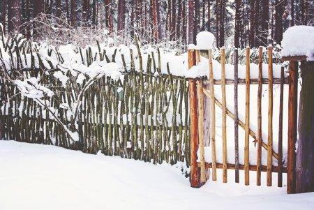 Clôture Reed en hiver