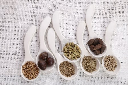 Spoons filled with spices