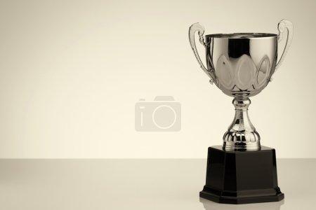 Winner silver trophy
