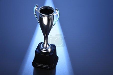 silver winning trophy