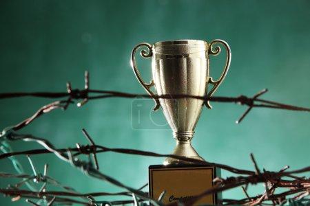Golden trophy in barbwire