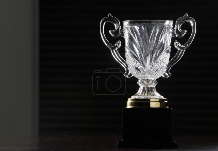 Close up of the glass trophy
