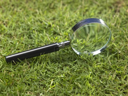 Magnifying glass on the grass