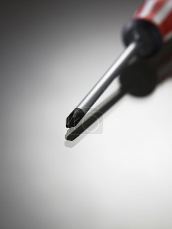 Photo for One screwdriver  on the gray background - Royalty Free Image