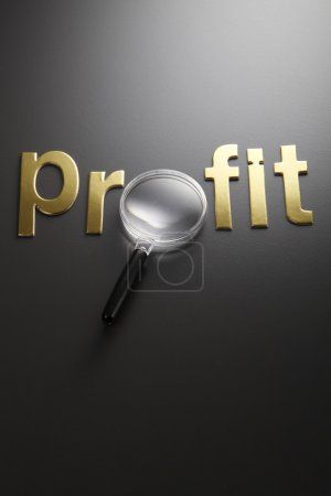 Profit and magnifying glass
