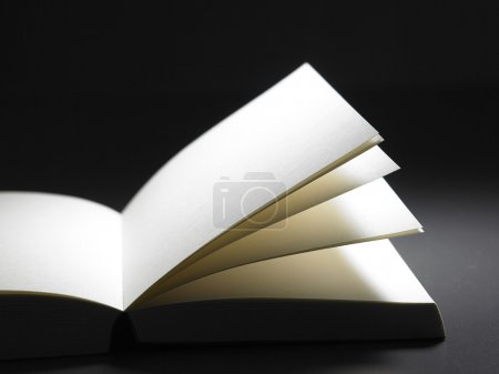 Book with blank page