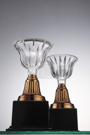 Two trophies front and back