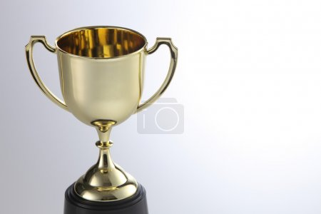 One metal trophy