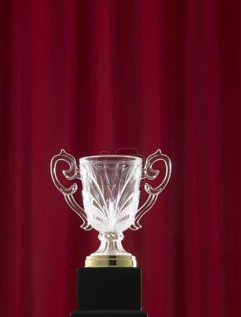 one crystal trophy