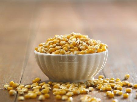 yellow dry corn