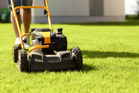 Photo for Picture of a young man mowing the lawn - Royalty Free Image