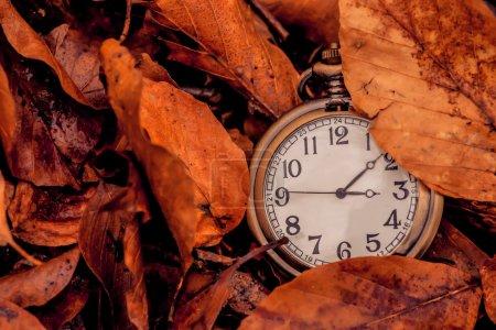 l'automne est à venir