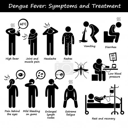 Dengue Fever Symptoms and Treatment Aedes Mosquito Stick Figure Pictogram Icons