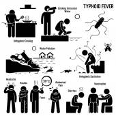 Illustrations showing typhoid fever risk factors which include unhygienic lifestyle such as poor sanitation and drinking untreated water Typhoid fever symptoms include headache rashes fever abdominal pain diarrhea or constipation You can get ty