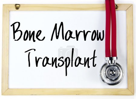 bone marrow transplant text write on blackboard