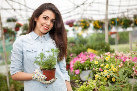 Young smiling woman florist working in the greenhouse