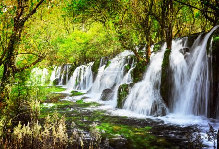 Scenic waterfall with crystal clear water among green forest