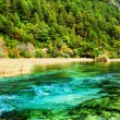 Amazing azure river with crystal clear water among...