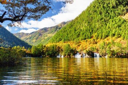 Photo pour Vue étonnante du lac avec l'eau cristalline parmi les bois colorés d'automne au jour ensoleillé, réserve naturelle de Jiuzhaigou (parc national de vallée de Jiuzhai), Chine. Chutes d'eau et montagnes scéniques à l'arrière-plan. - image libre de droit