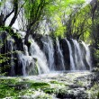 Beautiful waterfall with crystal clear water among...