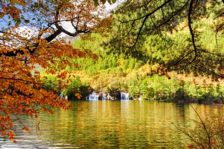 Lake with crystal clear water among foliage of trees in autumn