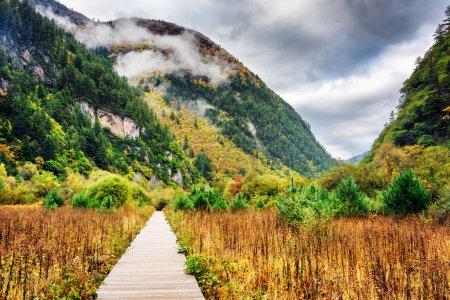 Photo pour Promenade en bois menant aux monts Min (Minshan) dans les nuages sur le plateau tibétain, réserve naturelle de Jiuzhaigou (parc national de la vallée de Jiuzhai), Chine. Paysage d'automne incroyable . - image libre de droit