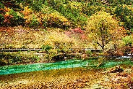 Photo pour Couleur étonnante de fleuve parmi des bois d'automne dans la réserve naturelle de Jiuzhaigou (parc national de vallée de Jiuzhai), Chine. Beau paysage avec la forêt d'automne et l'eau azur. - image libre de droit