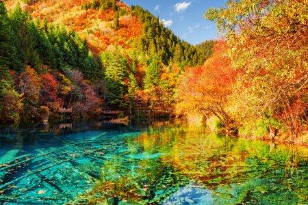 der fünf Blütensee (bunter See) inmitten des Herbstwaldes