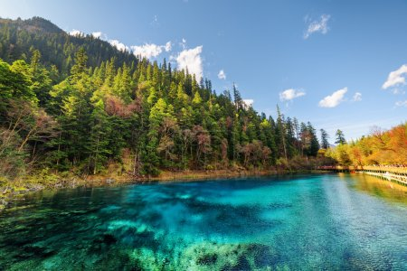Photo pour Vue imprenable sur la piscine de cinq couleurs (l'étang coloré) avec une eau cristalline azur parmi la forêt d'automne et les montagnes boisées dans la réserve naturelle de Jiuzhaigou (parc national de la vallée de Jiuzhai), Chine . - image libre de droit